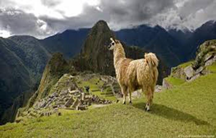 EN VIVO: Machu Picchu listo para abrir sus puertas
