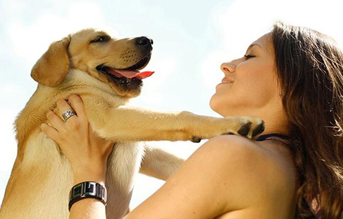 Mascotas ¿un soporte emocional en cuarentena?