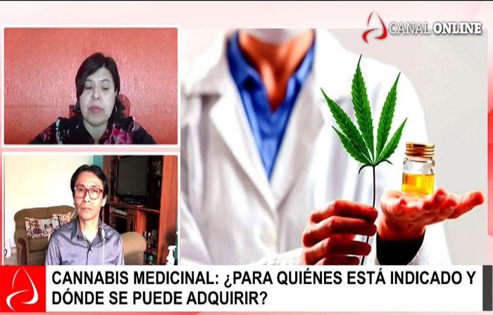 Cannabis medicinal: ¿para quiénes está indicado?