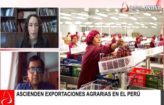 Ascienden exportaciones agrarias en el Perú