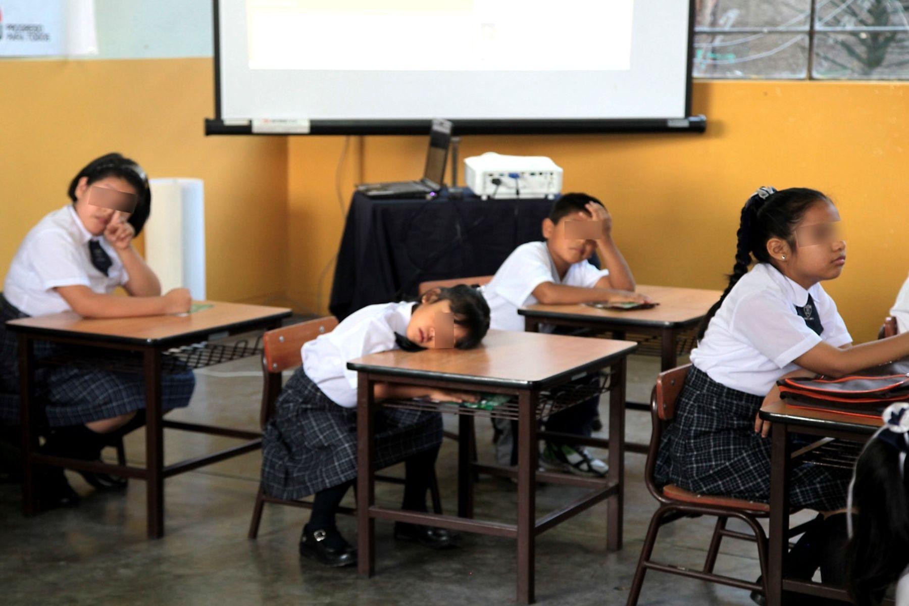 Anemia afecta aprendizaje escolar, advierten especialistas del INS. Foto: ANDINA/Difusión
