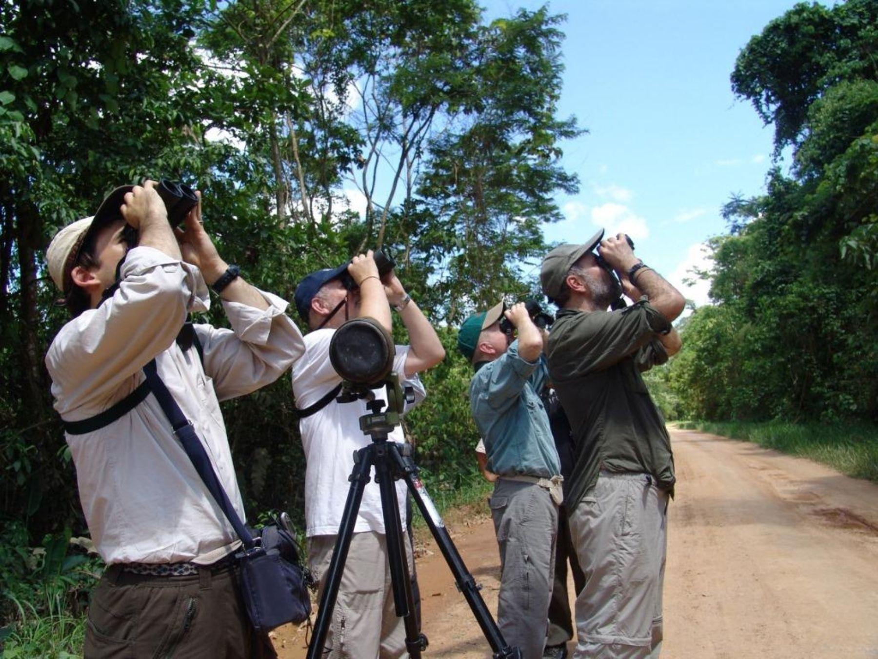 Avistamiento de aves. Foto: Archivo