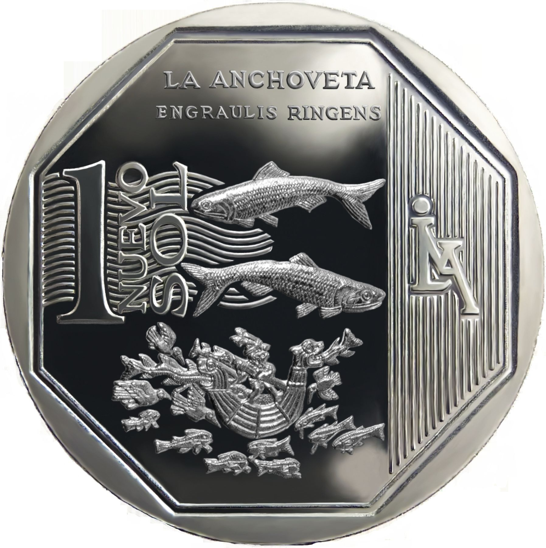 New one sol coin depicting anchovy.