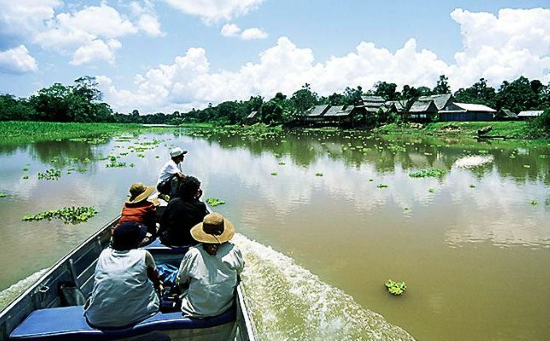 GEF to allocate US$113 million to protect the Amazon