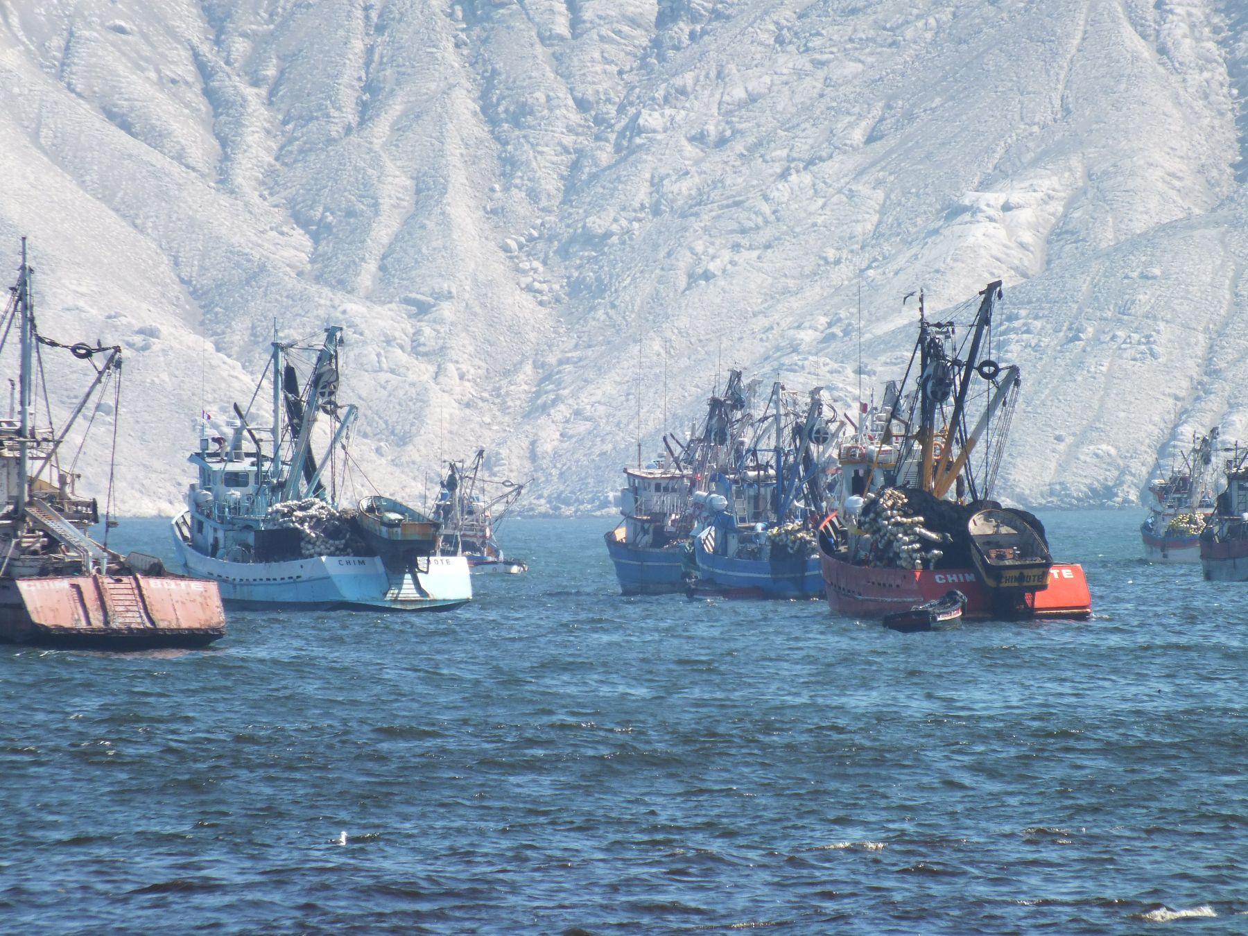 Pesca. Foto: ANDINA/Difusión