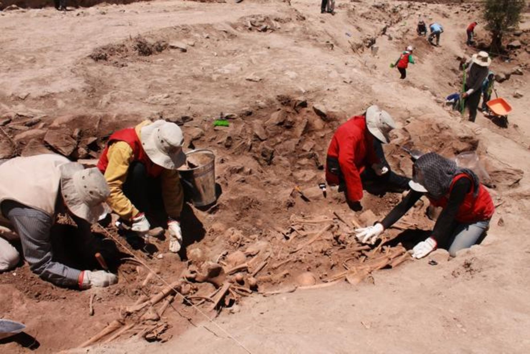 Ancient Sican Cemetery Discovered in Peru with 1000-Year-Old Skeletons