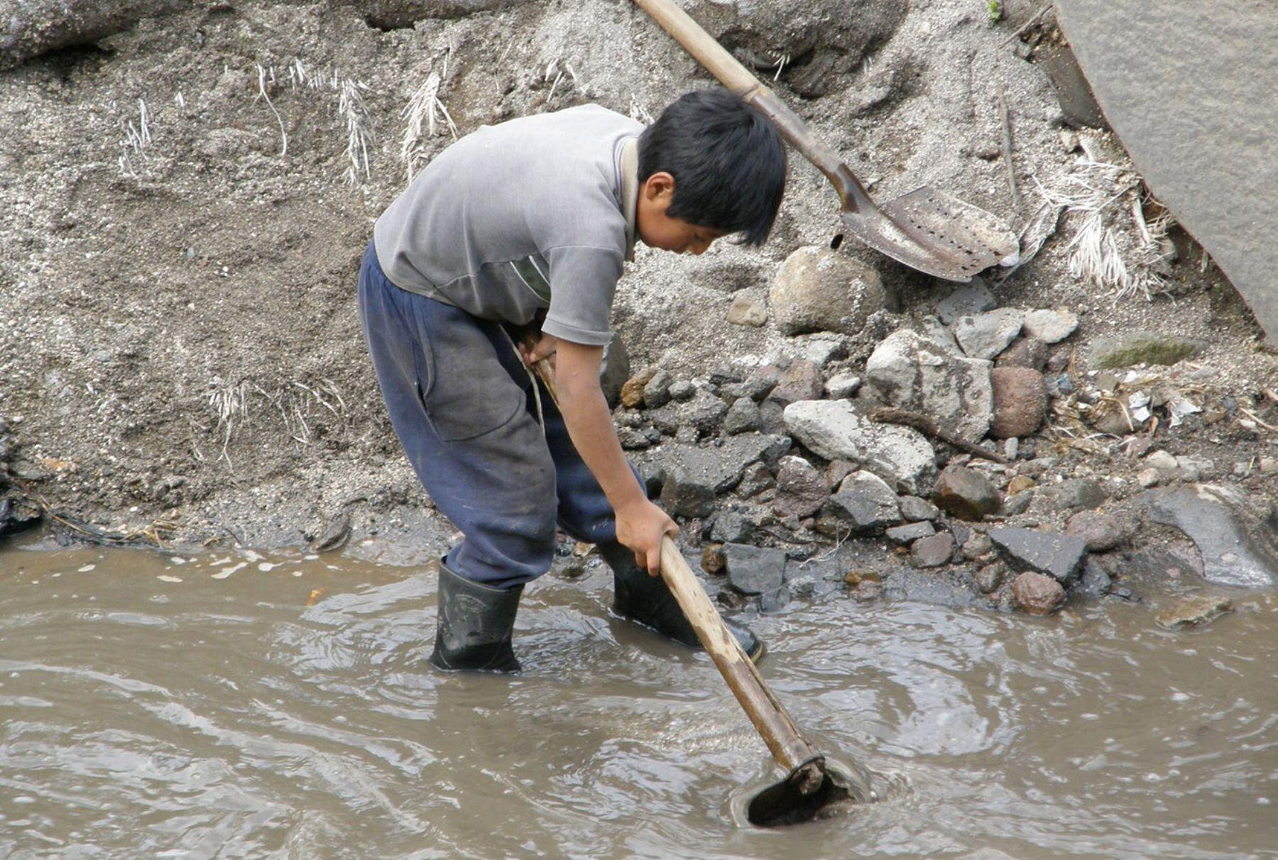 44 % de los menores que dejaron de trabajar viven en el área urbana y el 56 % en el área rural.INTERNET/Medios