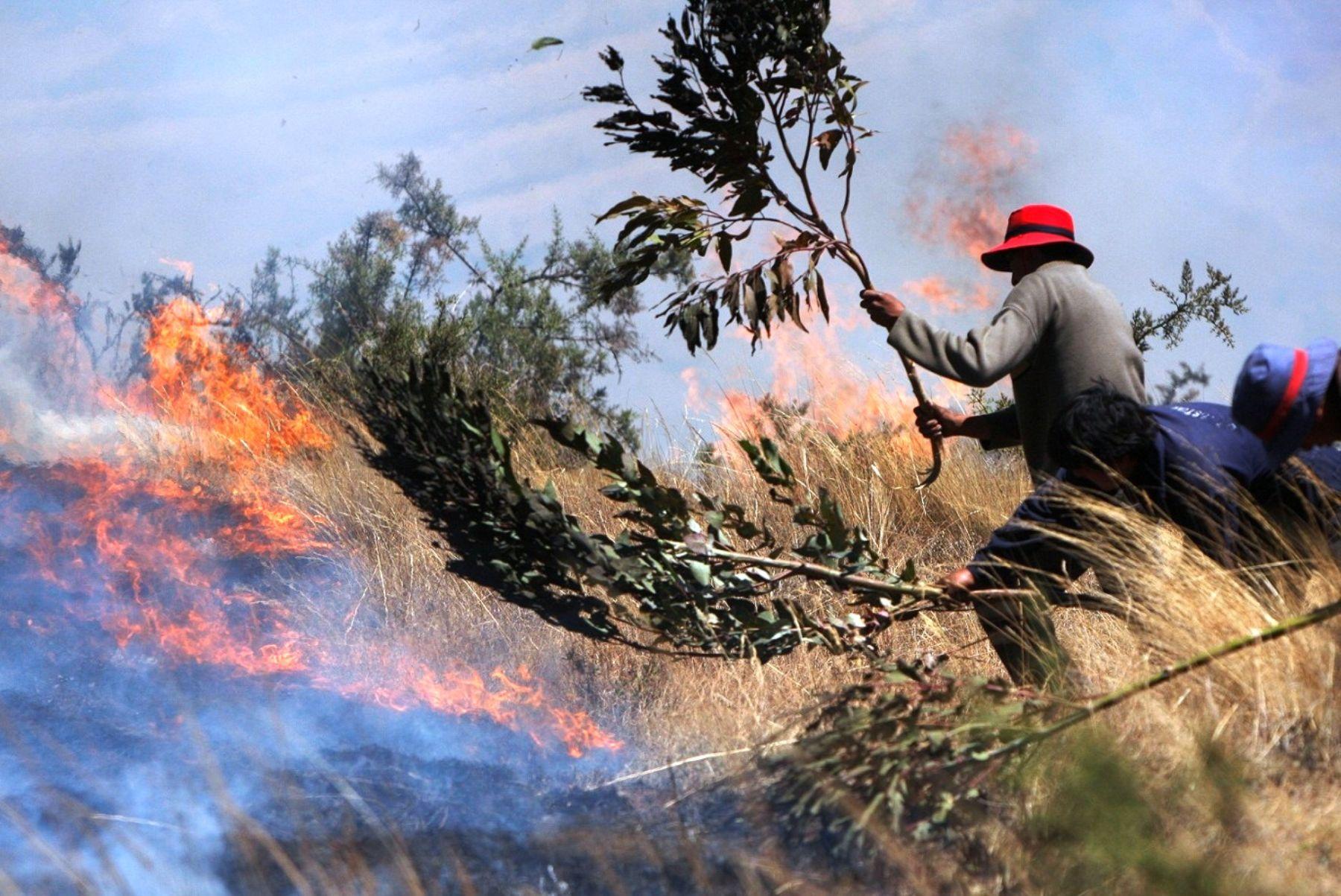 Ejecutan labores de prevención ante posibles incendios forestales en Machu Picchu. Foto: ANDINA/Difusión.