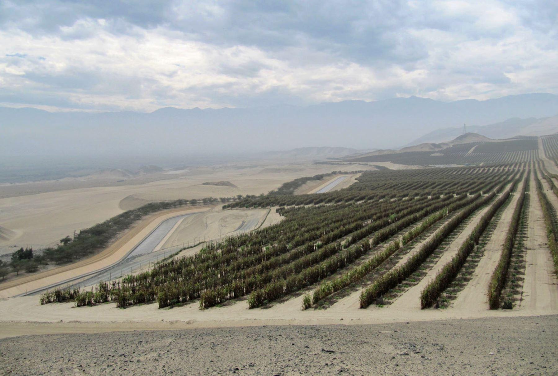 Proyecto de irrigación Chavimochic, ubicao en la región La Libertad. ANDINA