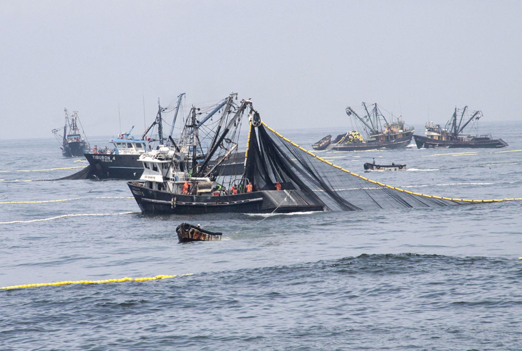 Producción Exportación Pescado Consumo Trabajadores Pesca Industrial Mar Harina Provincias