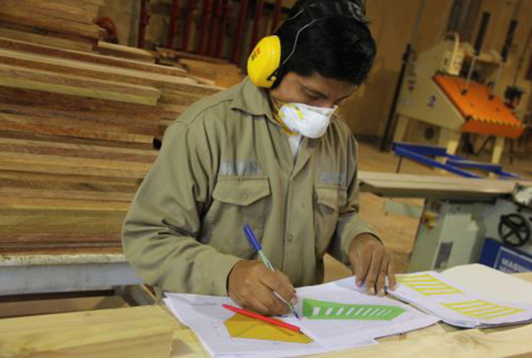 Citemadera brinda oportunidad a carpinteros. Foto: Andina/Difusión
