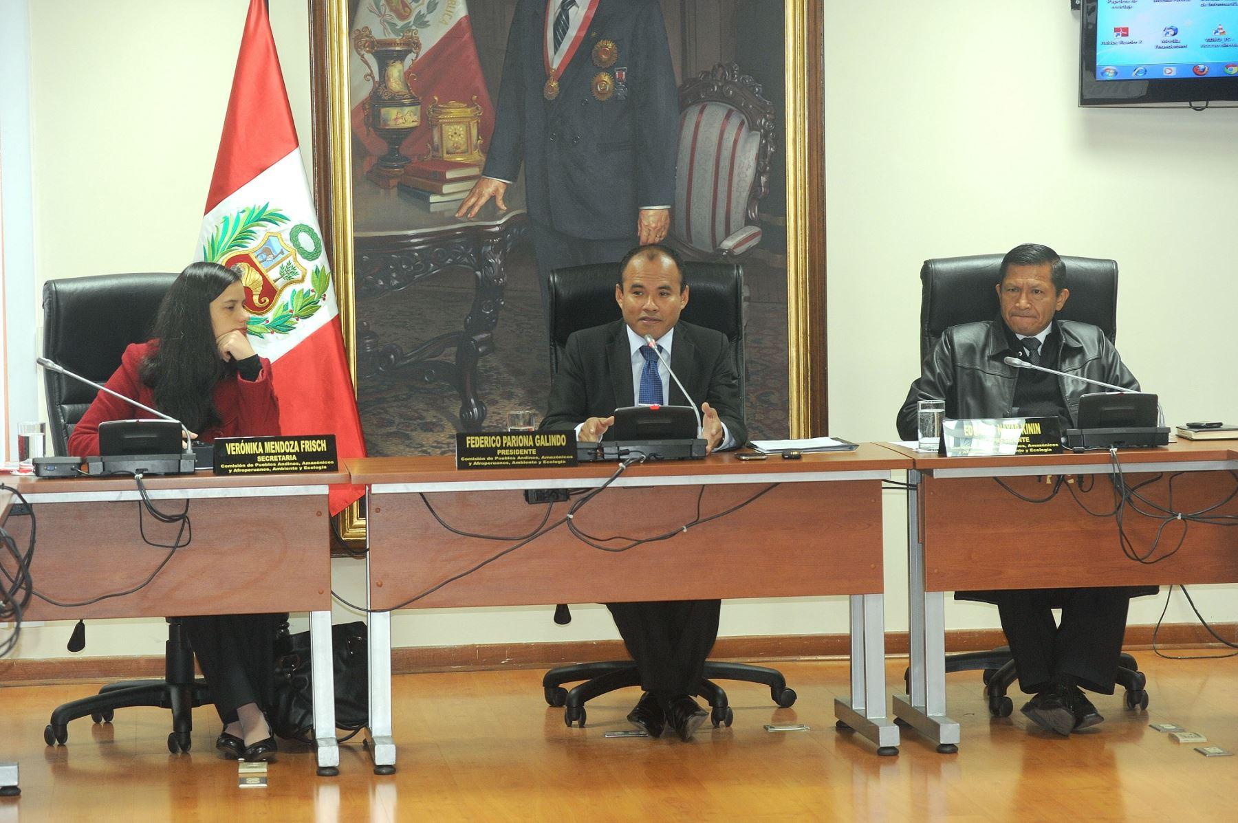 Comisión de Pueblos Andinos y Amazónicos presido por Federico Pariona