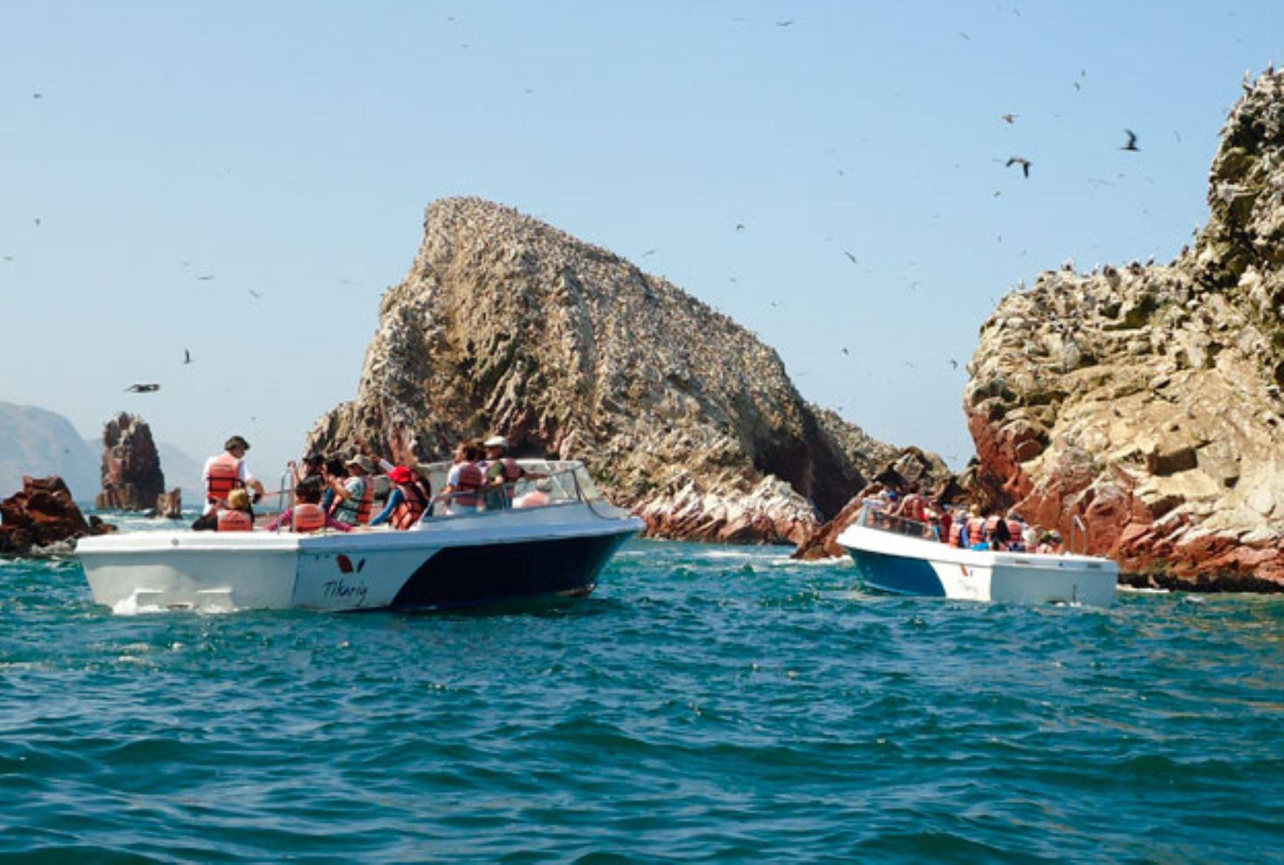 Islas Ballestas. INTERNET/Medios