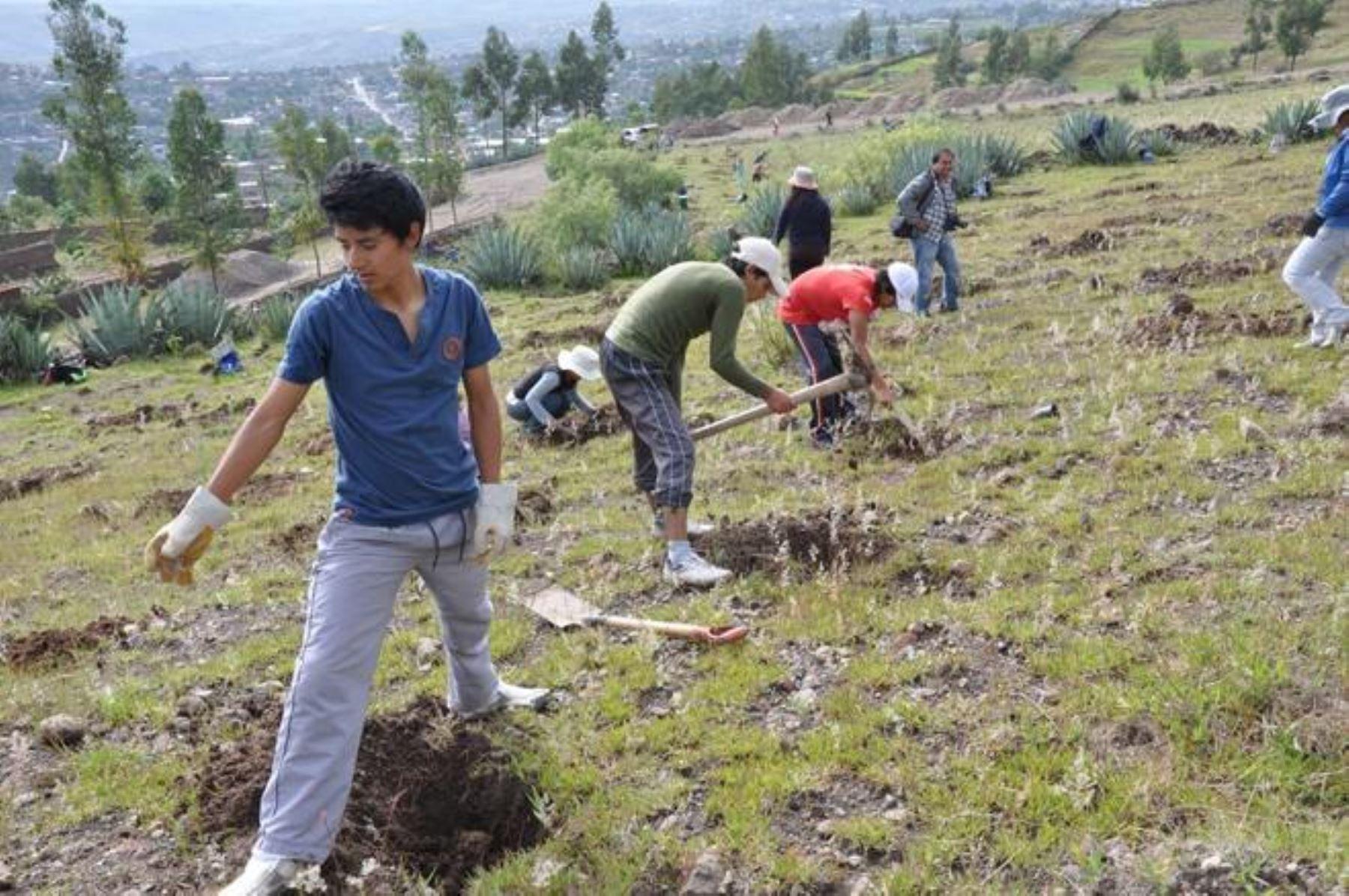 Ayacucho se ubica en tercer lugar en ranking de ejecución presupuestal. ANDINA/Archivo