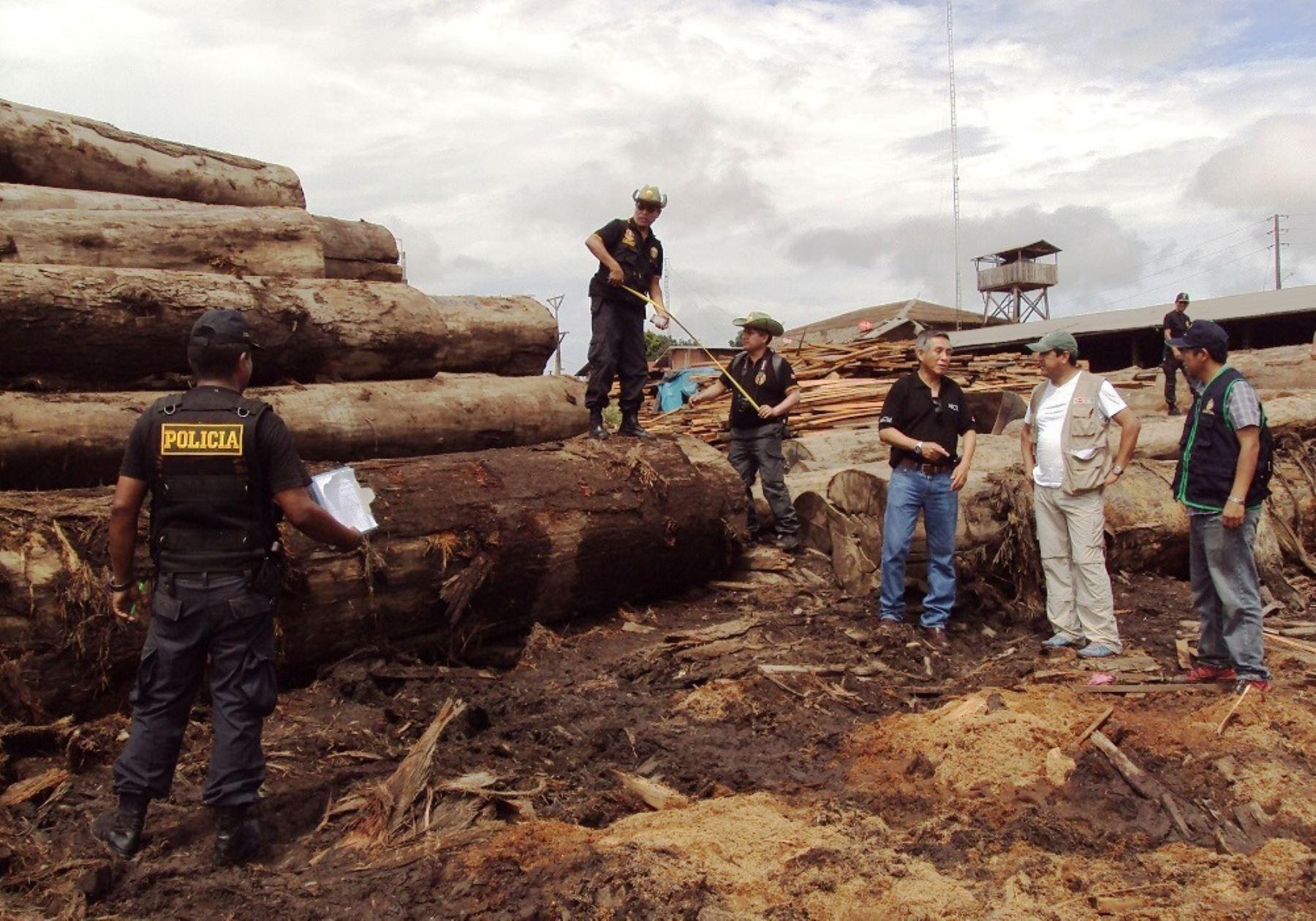 Más de 7 millones de pies tablares de madera ilegal son inmovilizados en Ucayali. Foto: ANDINA/Difusión.