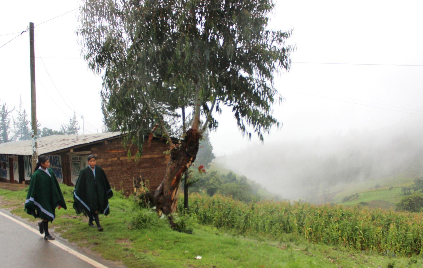 Se suspendieron las labores escolares en varios colegios de Piura por las lluvias intensas que se registran en la región. ANDINA
