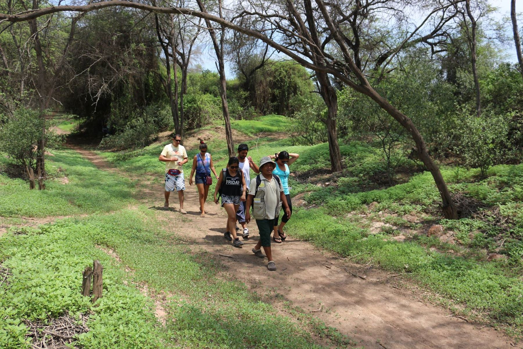 Santuario Histórico Bosque de Pómac. INTERNET/Medios