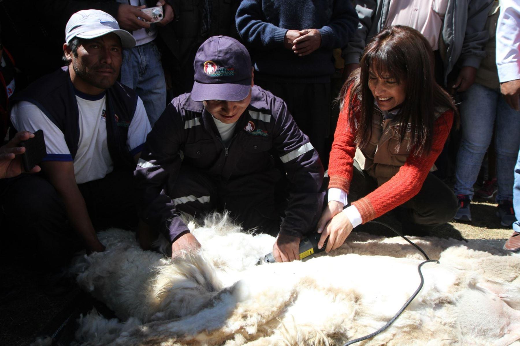 Ministra de Comercio Exterior y Turismo, Magali Silva, visita el Tambo Turístico de Sacsamarca en Huancavelica.