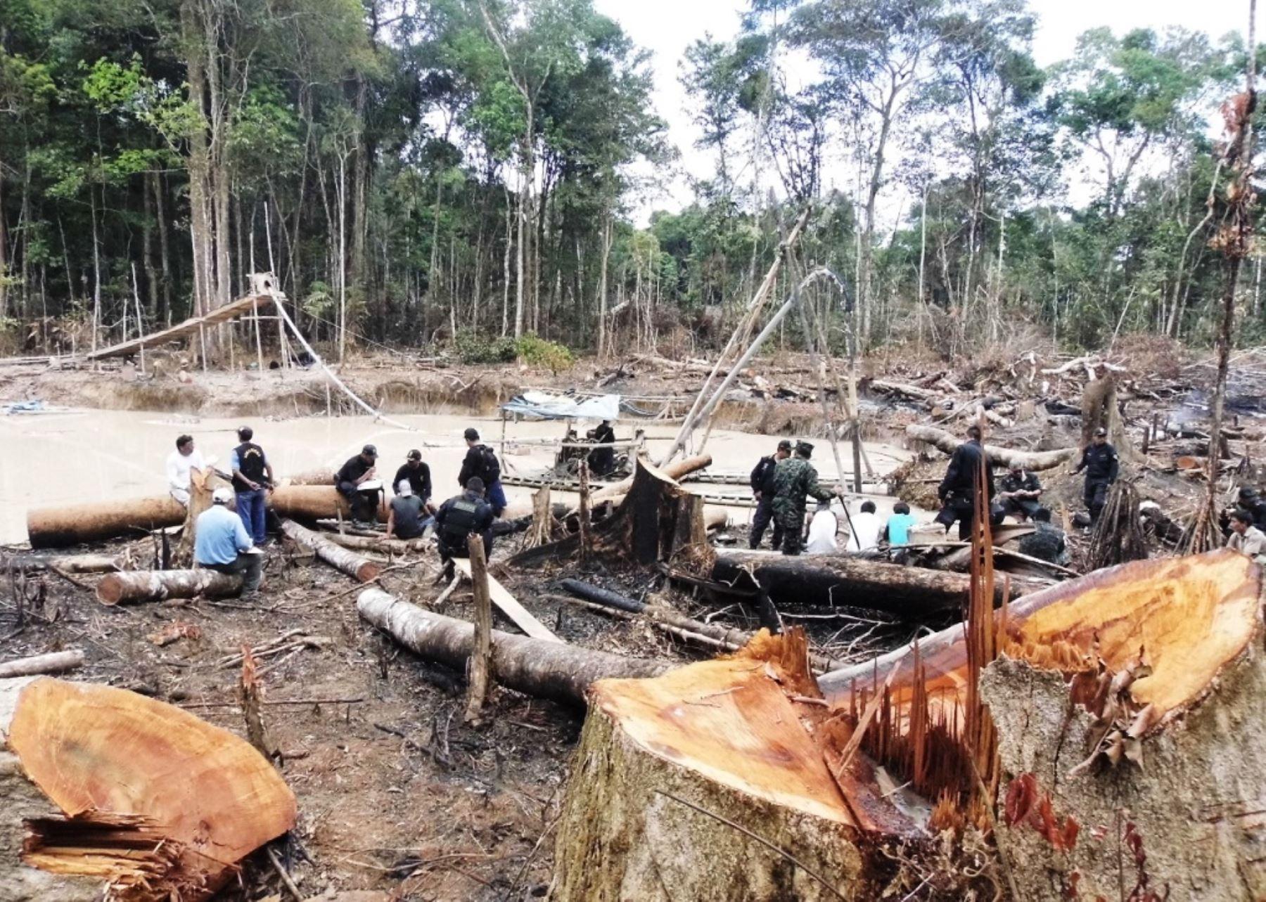 Minería ilegal depreda los bosques en Inambari, Madre de Dios. Foto: ANDINA/Difusión.