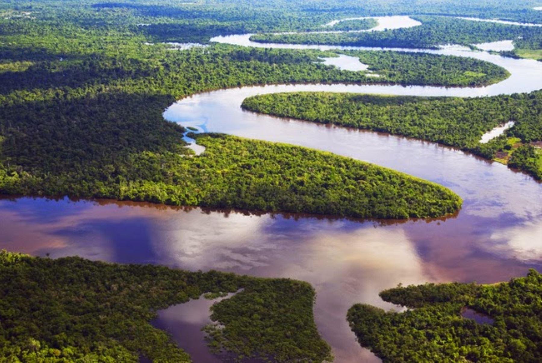 Hallan en Perú a mujer y 3 niños colombianos perdidos hace un mes en la Amazonía.. INTERNET/Medios