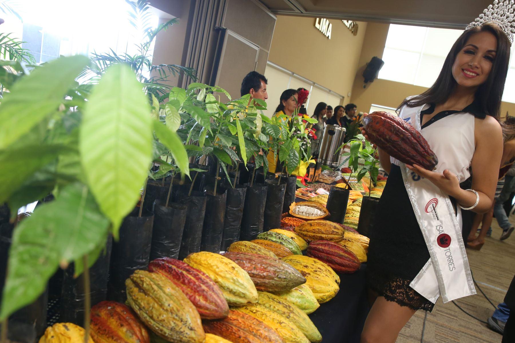 Gobierno Regional de Amazonas promueve la ruta de cacao nativo de esa región. ANDINA/Oscar Farje