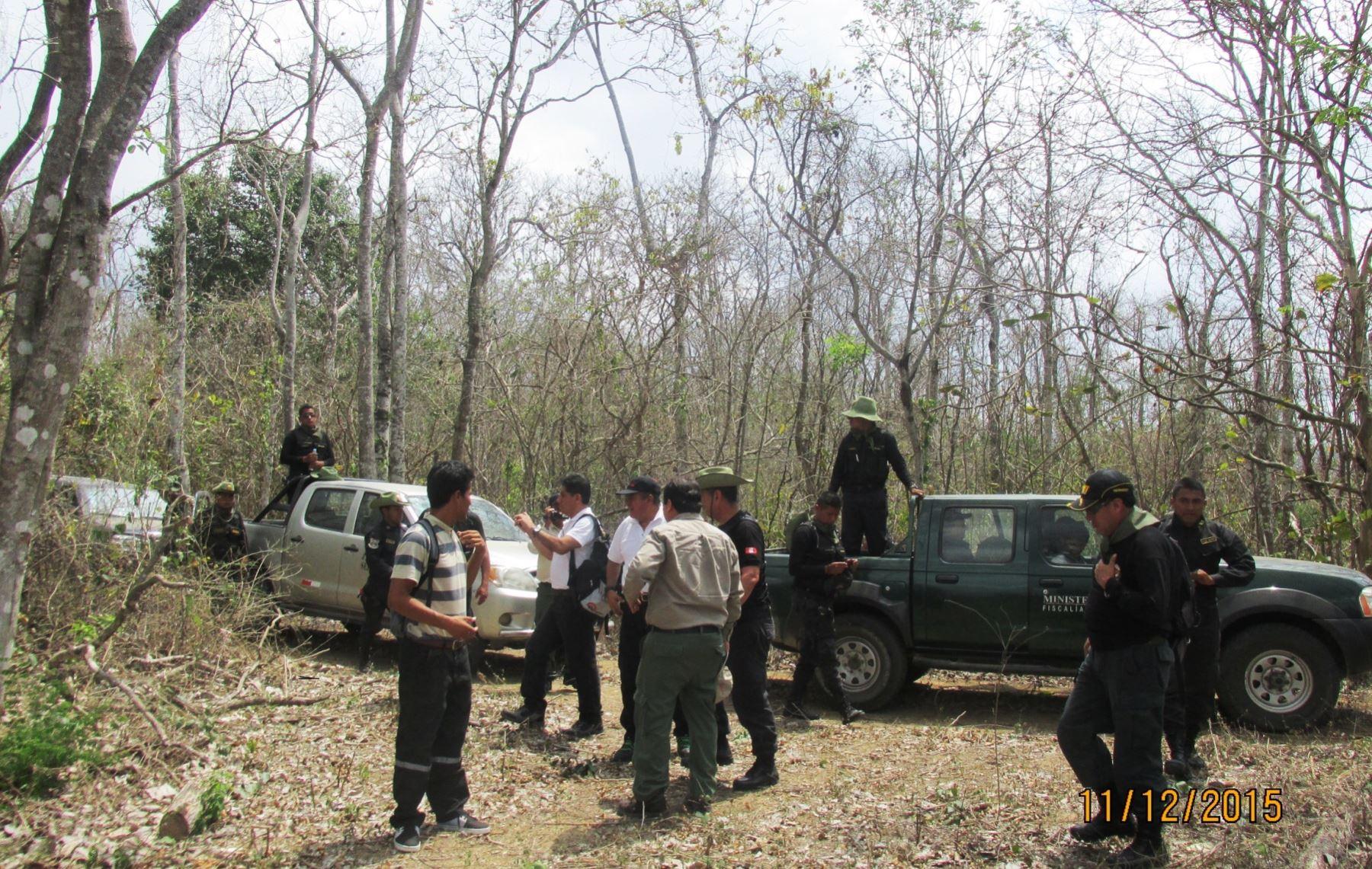 En megaoperativo contra la tala ilegal en Parque Nacional Cerros de Amotape se detuvo a cuatro personas.