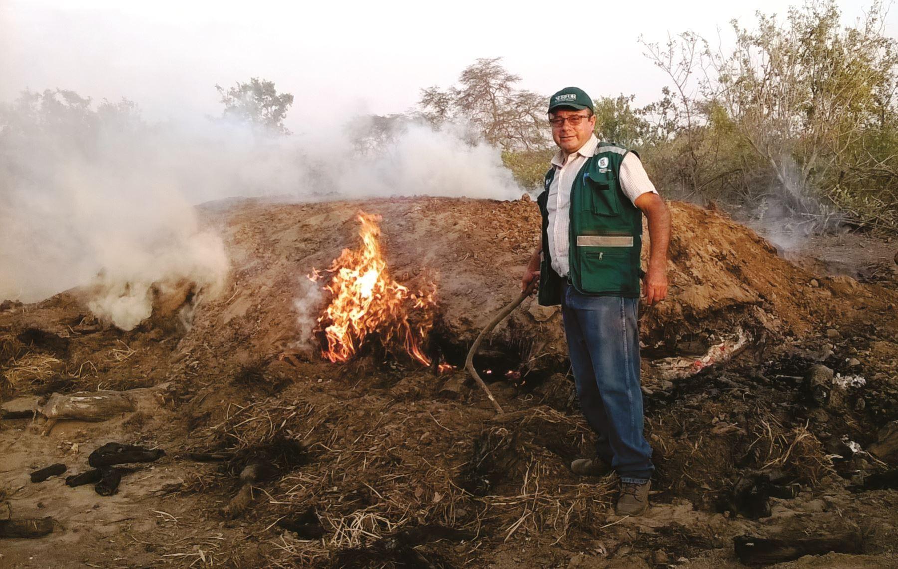 Personal del Serfor y de la Fiscalía de Prevención del Delito de Lambayeque destruyeron los hornos donde  se producía de manera ilegal carbón vegetal. ANDINA