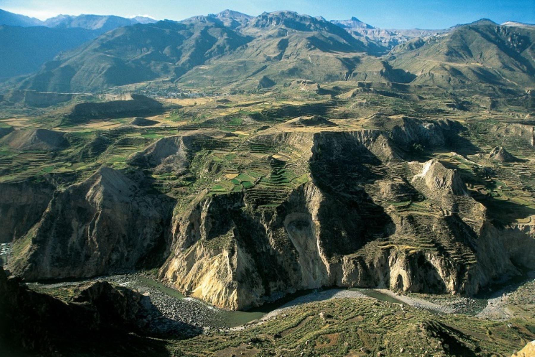 Cañón del Colca en Arequipa Foto: ANDINA//Difusión