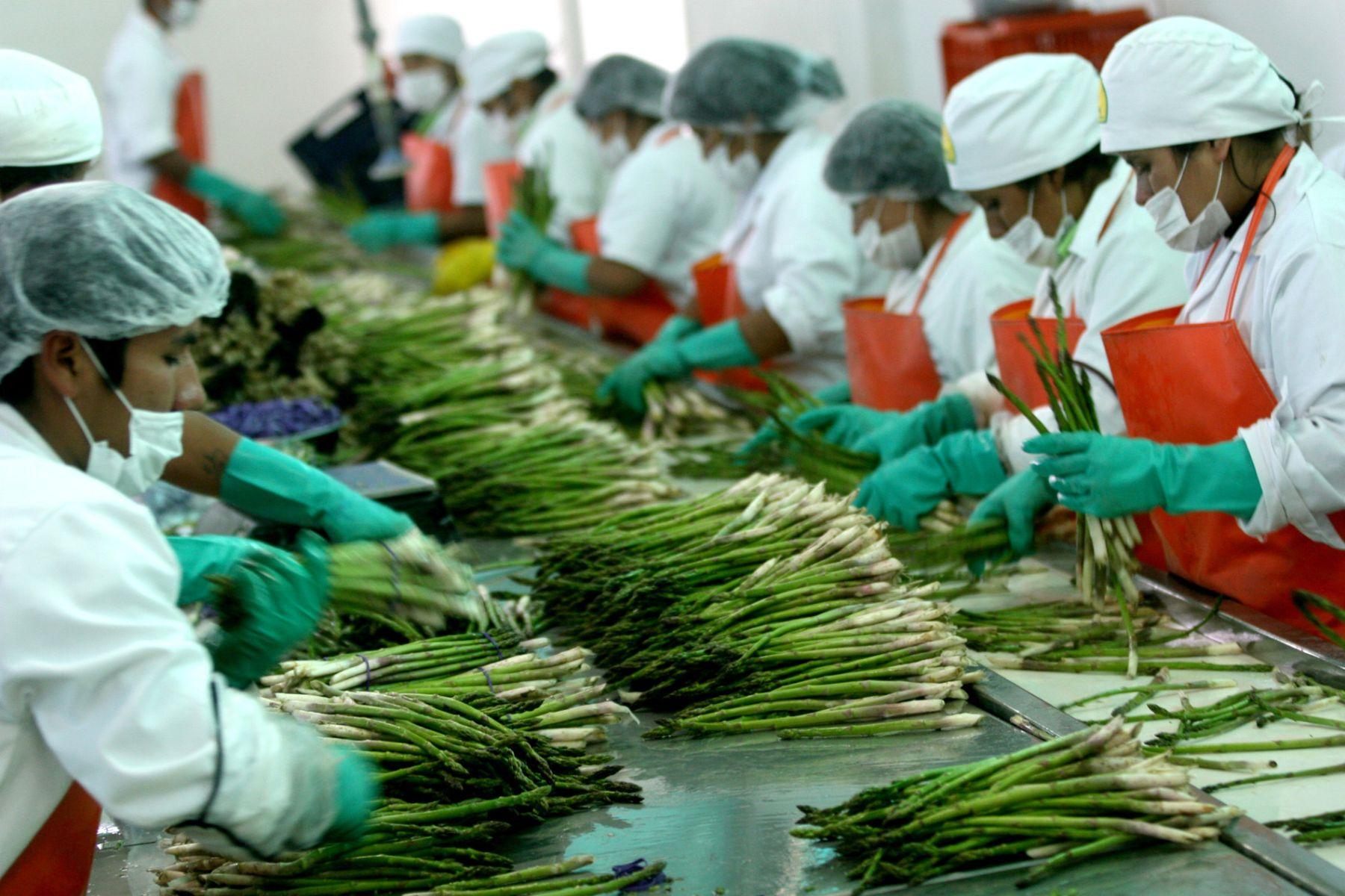 Agroexportación. Foto:ANDINA/Archivo