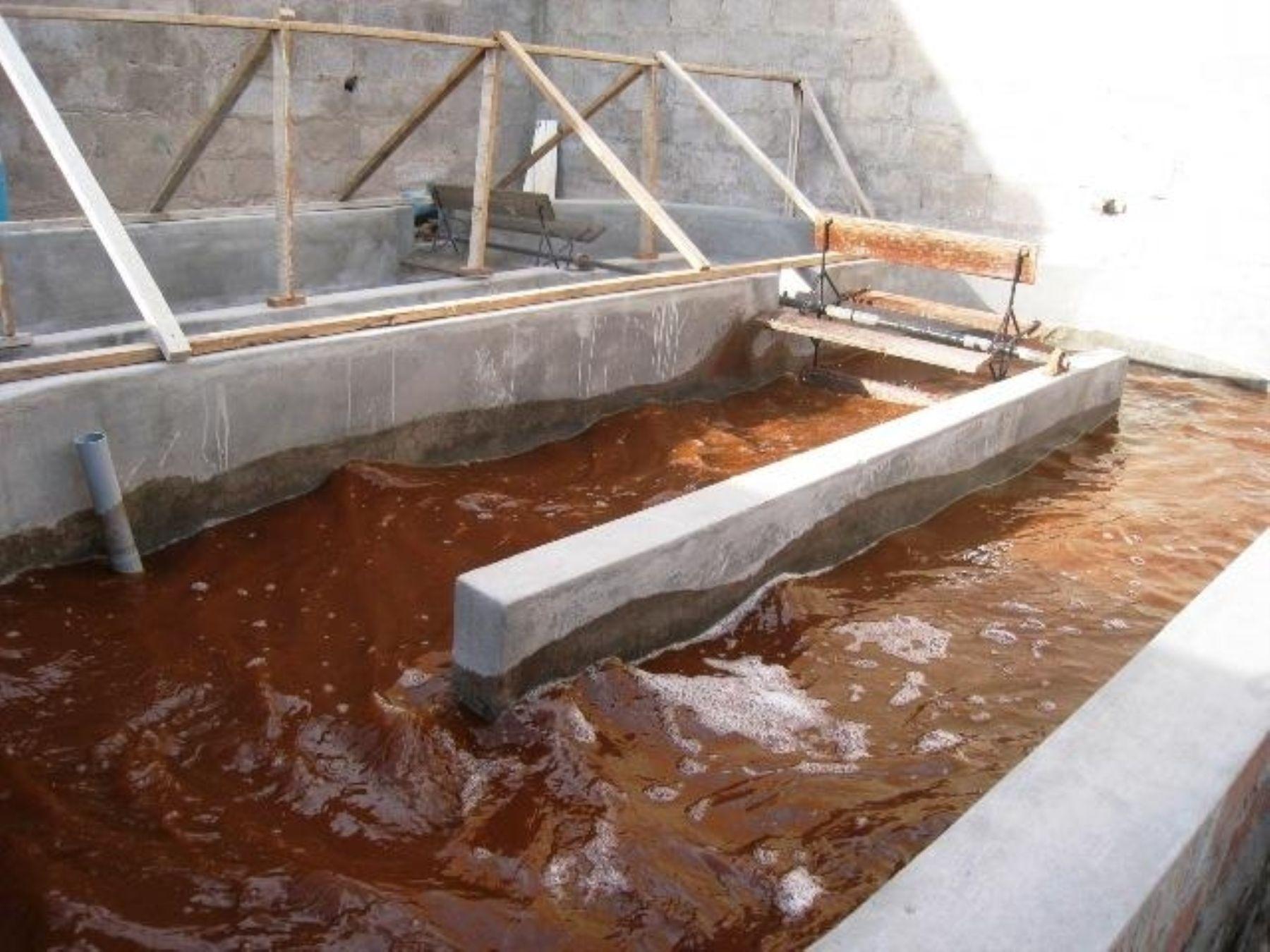 Cultivo de microalga para producir pigmento astaxantina natural. Foto: Andina/Difusión.