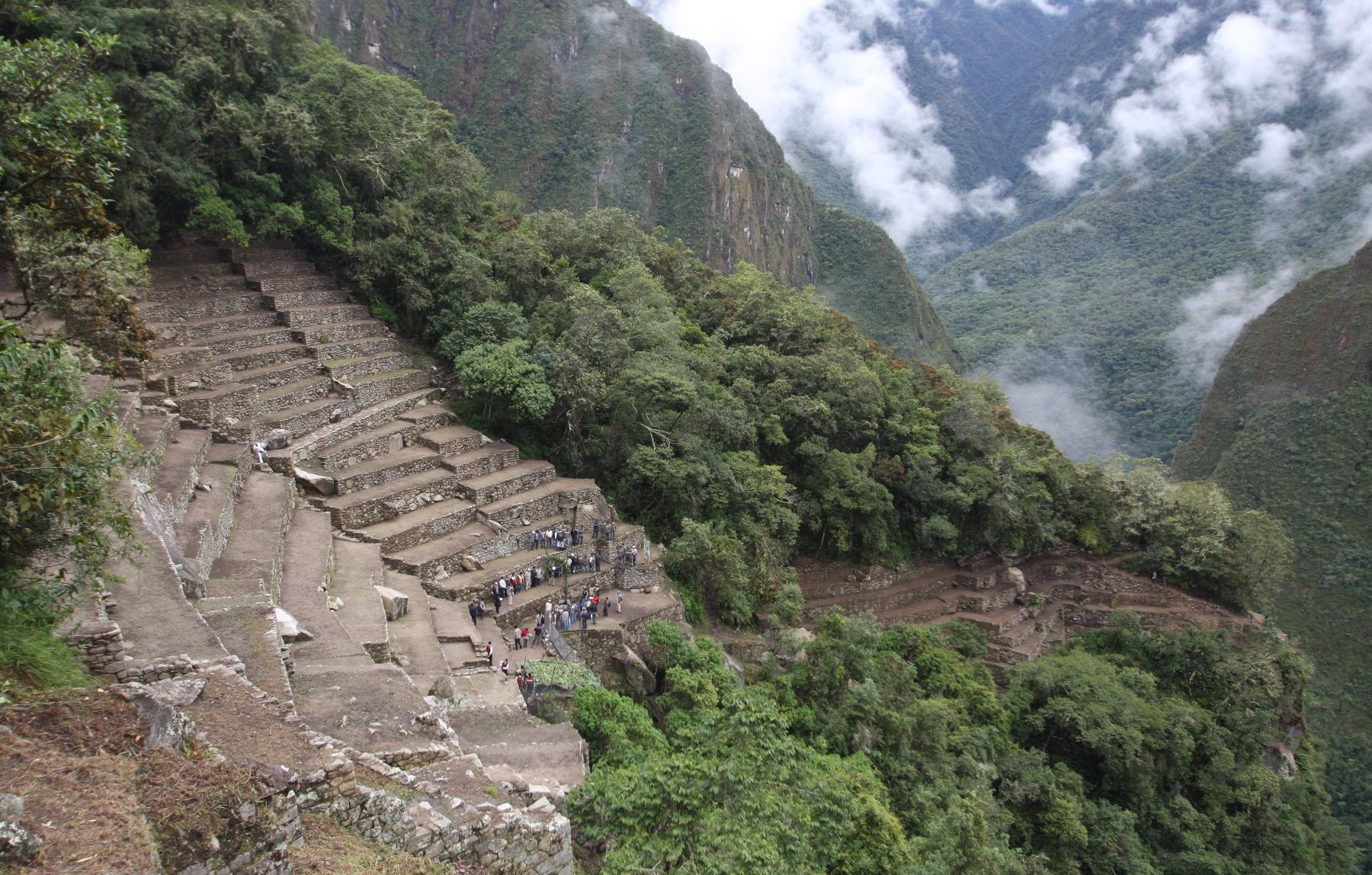 Andenes restaurados en Machu Picchu. Foto: ANDINA/Percy Hurtado.