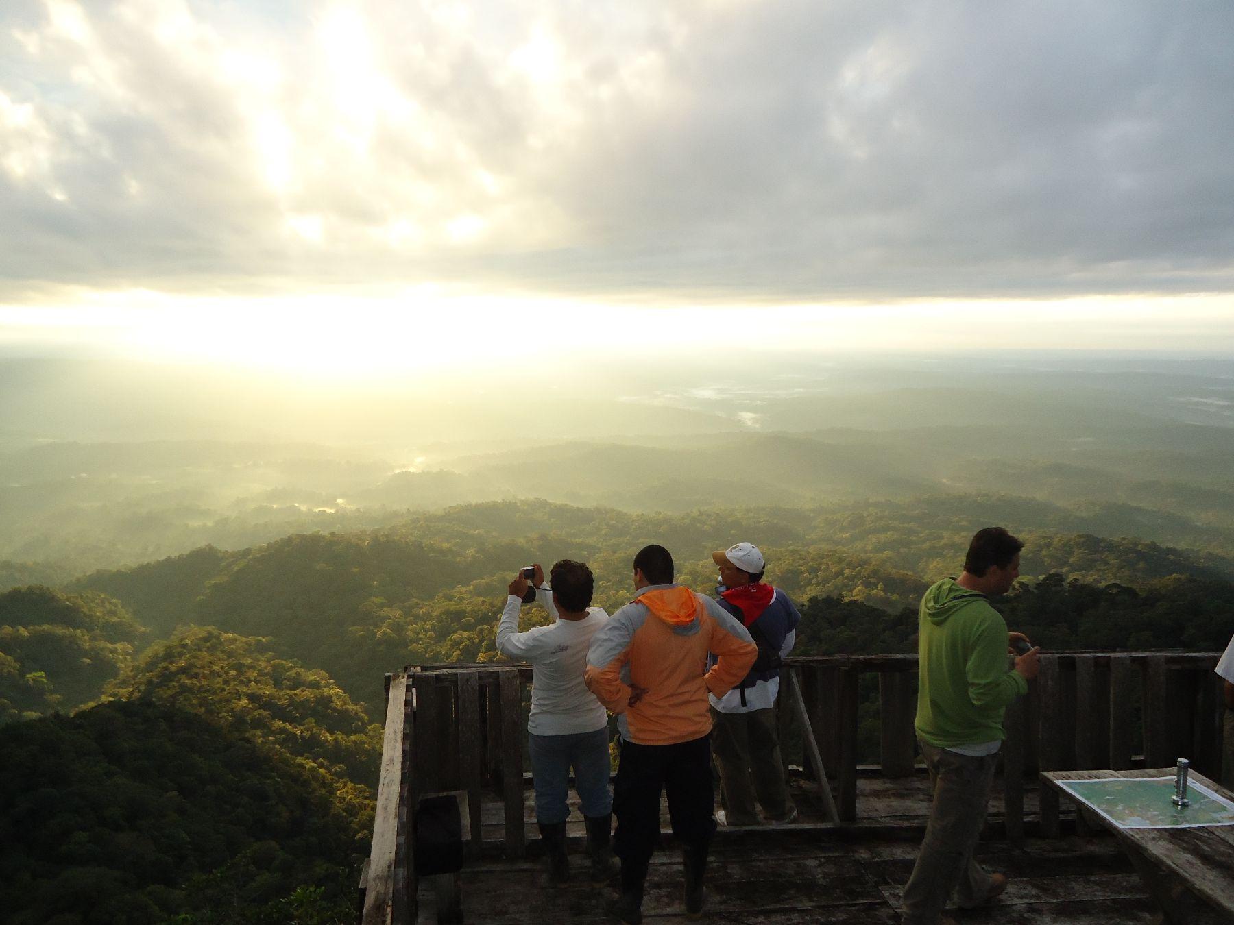 Parque Nacional Cordillera Azul. ANDINA/Difusión