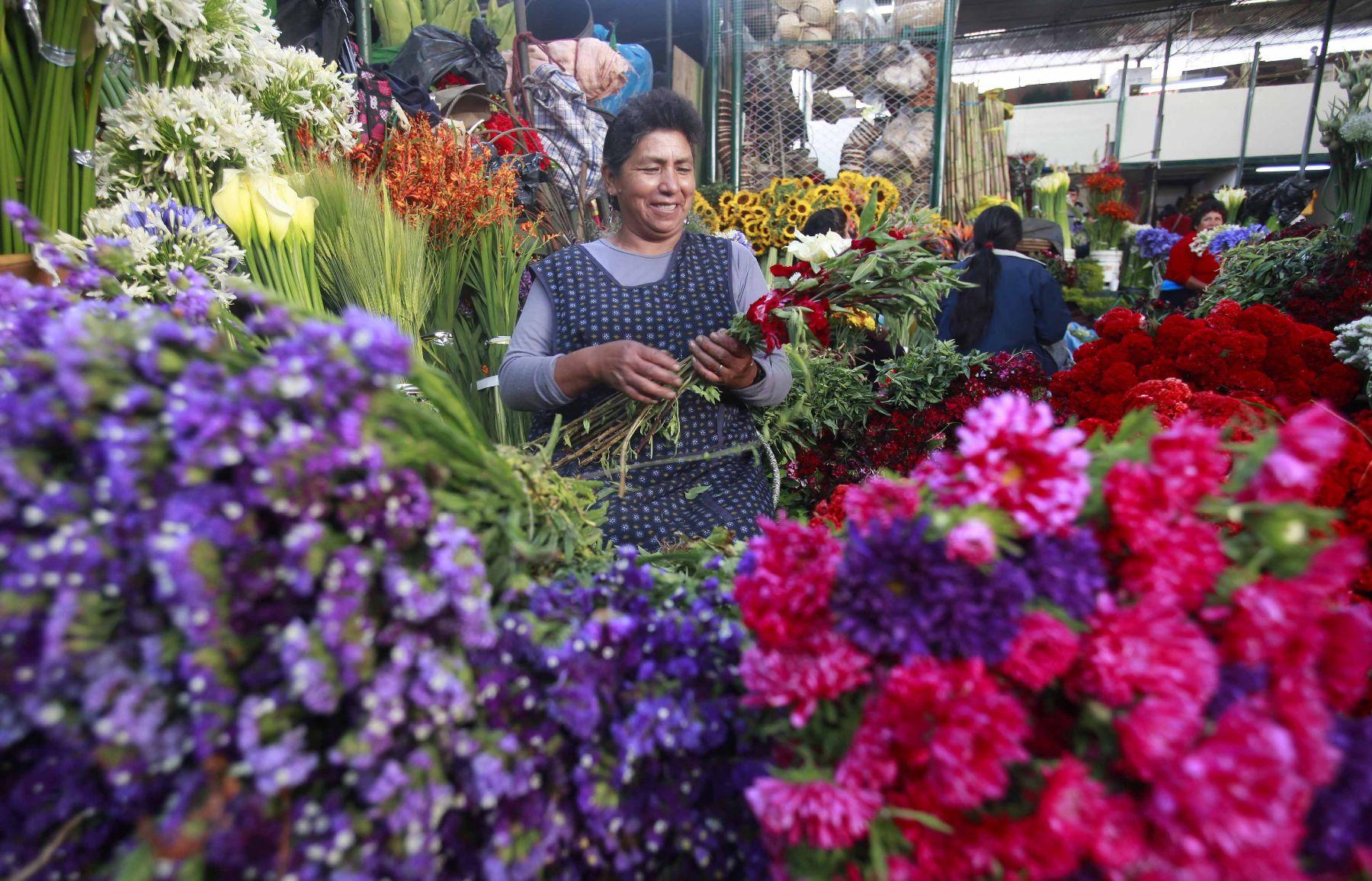 Convocan a proveedores de plantas, semillas, abonos, insecticidas y fungicidas