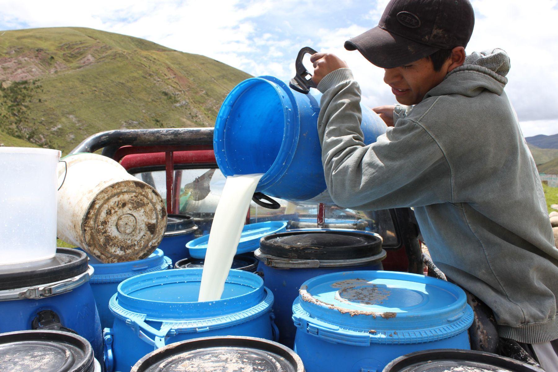 Photo: Dirección Regional de Agricultura de Junín. Foto:ANDINA/Difusión.