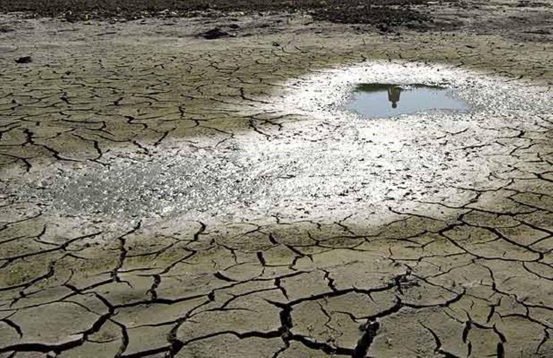 El Perú marca un nuevo hito histórico en la acción climática al presentar su Hoja de Ruta para hacer frente al cambio climático con 153 acciones de adaptación y mitigación, llamadas también Contribuciones Nacionales Determinadas. ANDINA/Difusión