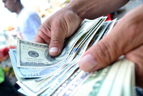 Dólares. Foto: ANDINA