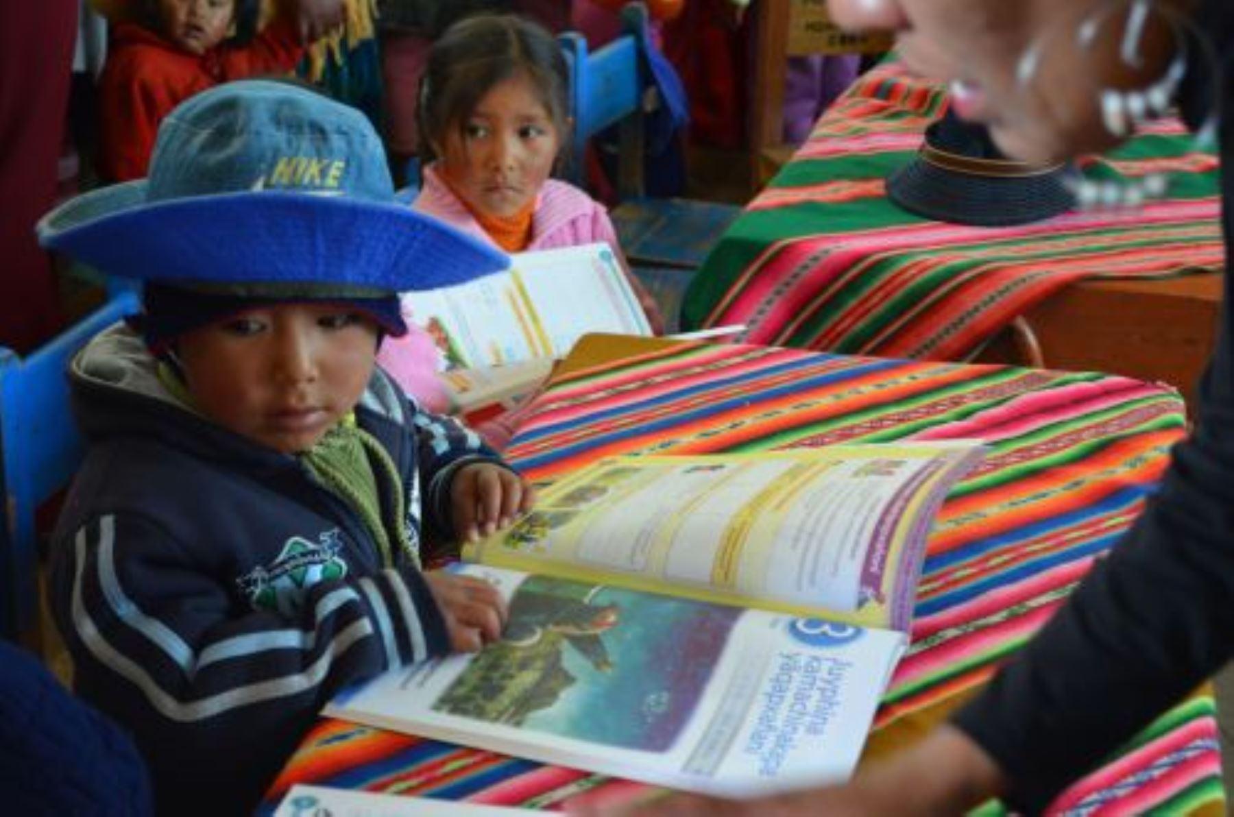 Inversión sostenida en educación rural permitió que Perú mejorará en pruebas PISA. ANDINA/Difusión