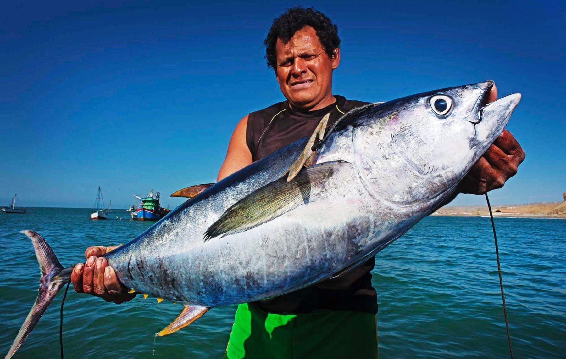Ministerio de la Producción y WWF firman convenio para lograr la sostenibilidad ambiental del sector pesquero. ANDINA/Difusión