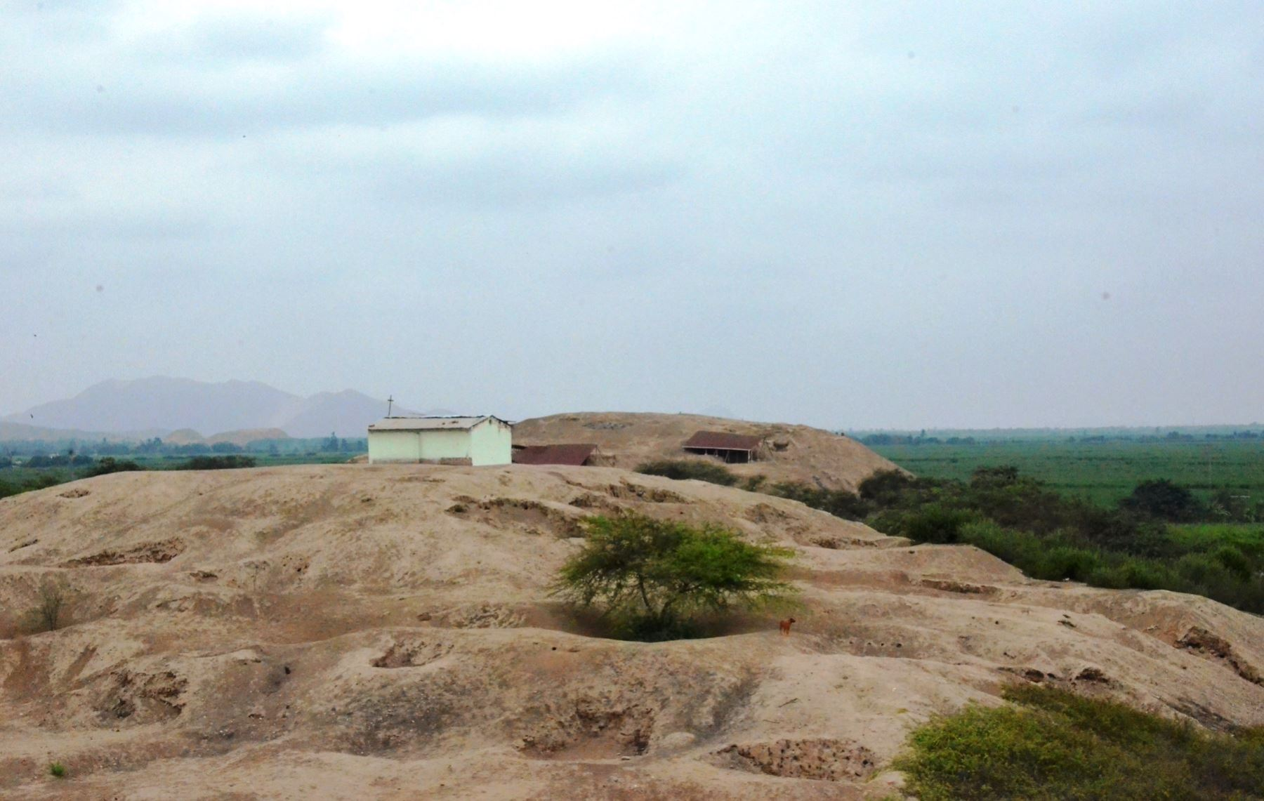 El complejo arqueológico Santa Rosa, ubicado en Lambayeque, comprende un área de 3 km2. ANDINA