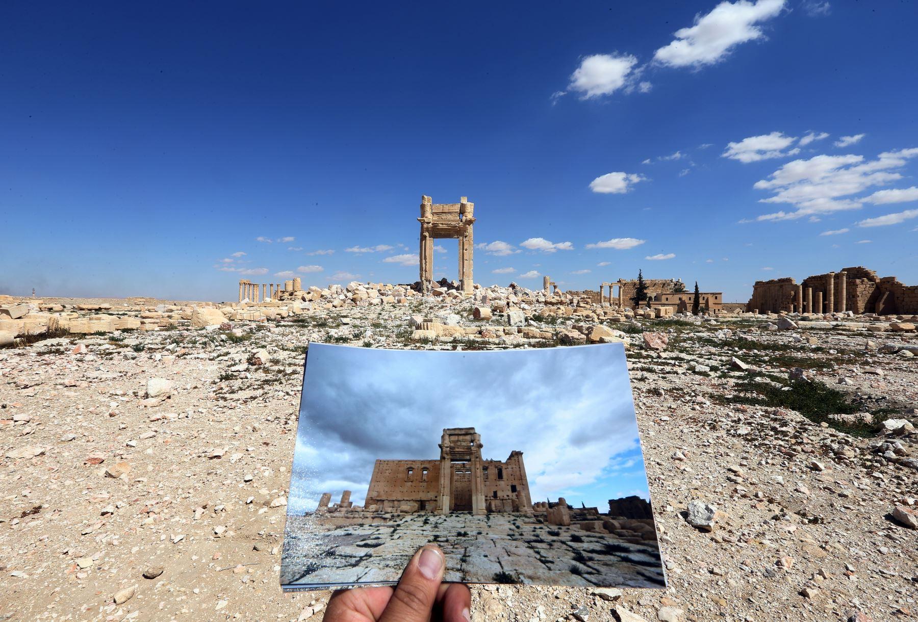 Dormitorio Café vida  Así quedaron las bellas ruinas de Palmira tras la trágica presencia del  Estado Islámico | Noticias | Agencia Peruana de Noticias Andina