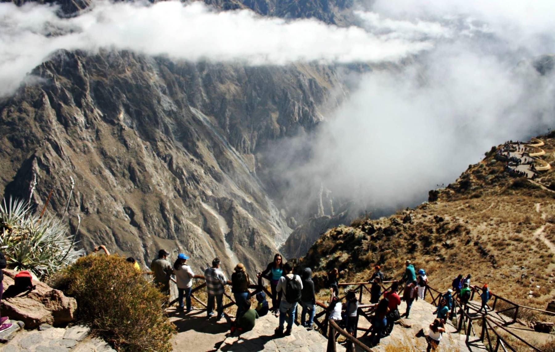 El cañón del Colca, emblemático destino turístico de Arequipa. ANDINA