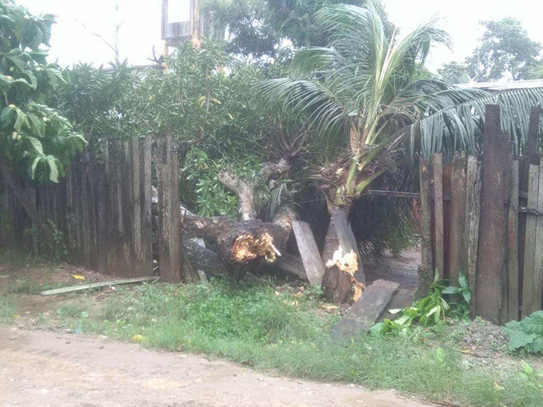 Fuertes vientos provocaron daños considerables a la ciudad de Pucallpa. Foto: Facebook Batidas Policiales.
