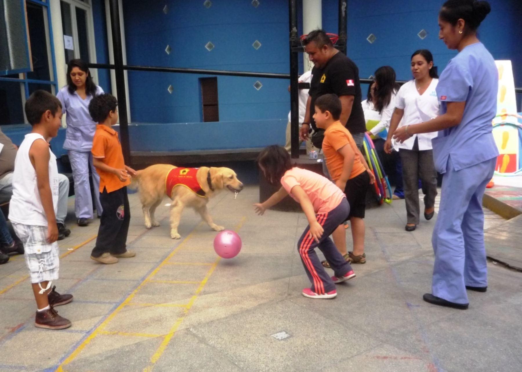 Niños con discapacidad reciben terapia asistida con canes en hospital Almenara. Foto: ANDINA/Difusión.