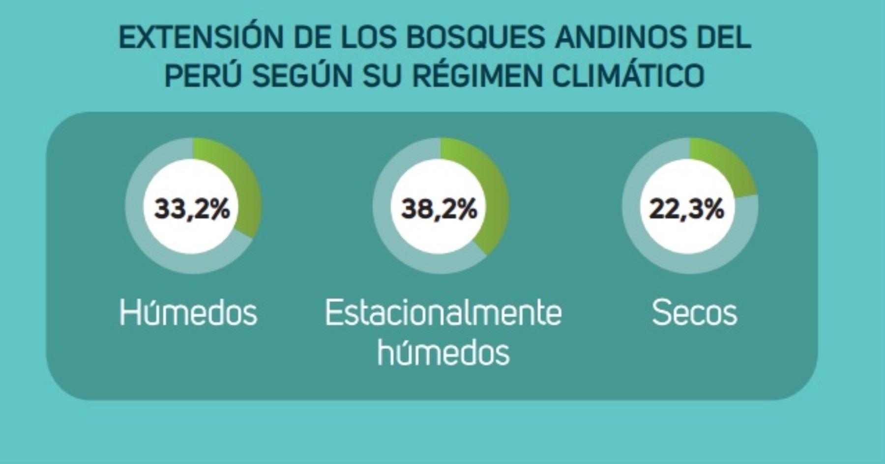 Los bosques andinos en el Perú se clasifican en húmedos (33.2 por ciento), estacionalmente húmedos (38.2 por ciento) y secos (22.3 por ciento).