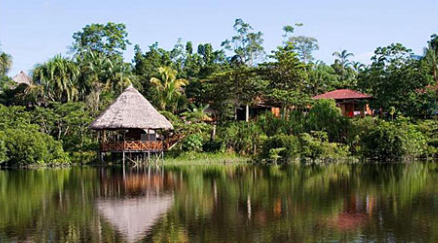 Áreas de Conservación Privada, una creciente opción para preservar ecosistemas en Perú. ANDINA/Difusión