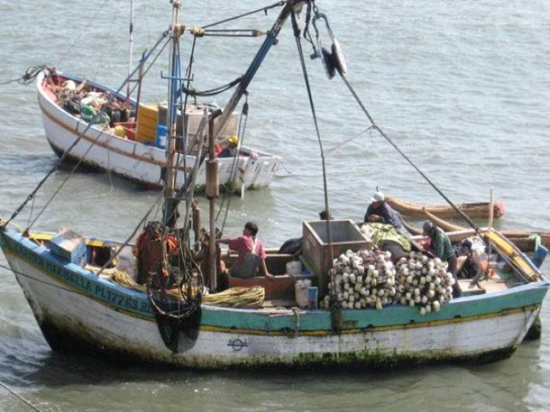 Pesca artesanal. ANDINA/Difusión
