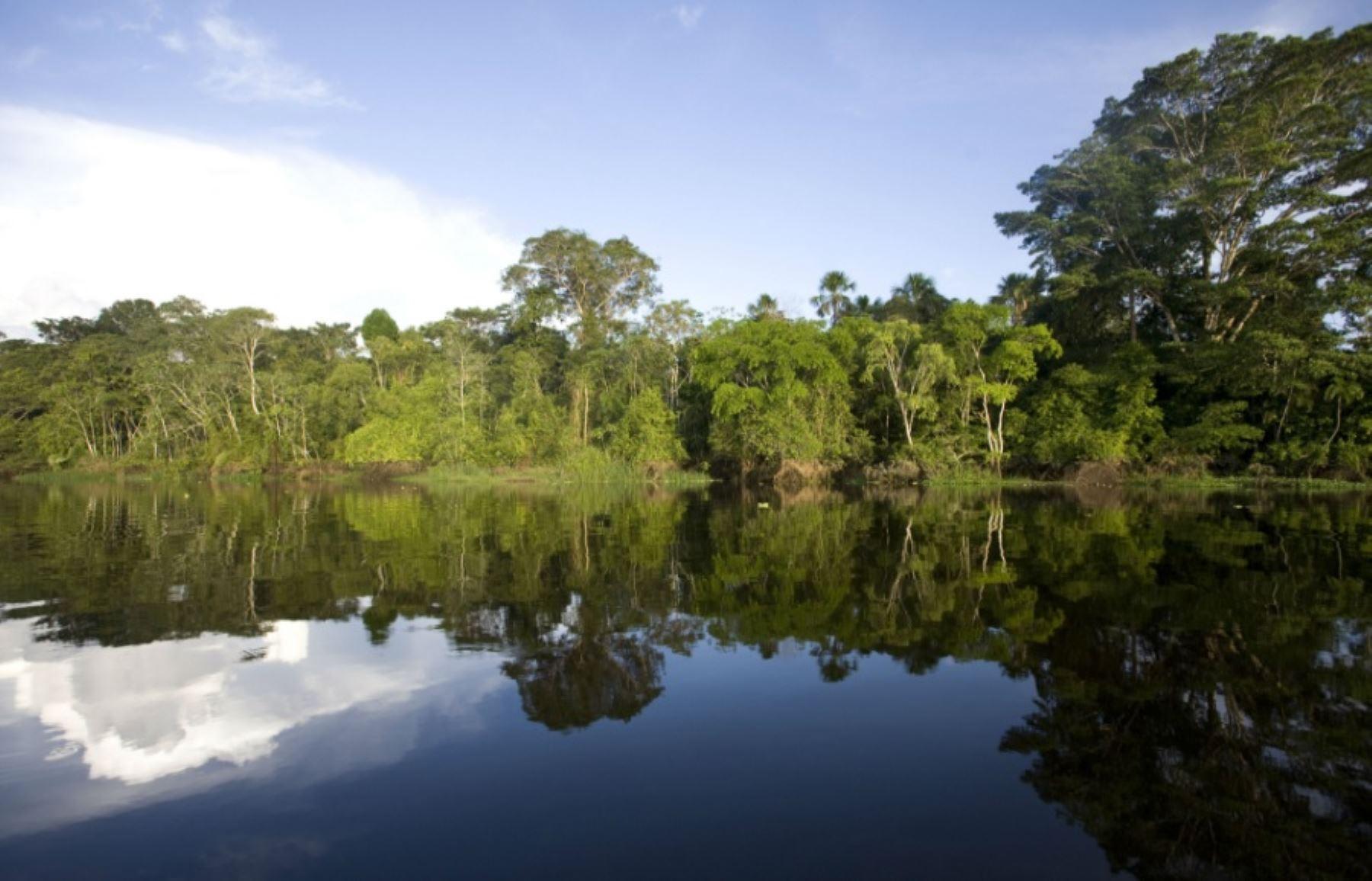 El Ministerio del Ambiente reconoció el área de conservación privada Fundo Rosita, por un período de 10 años, sobre una superficie de 244.92 hectáreas, en el sector Peña Negra, del distrito de San Juan Bautista, provincia de Maynas, departamento de Loreto.