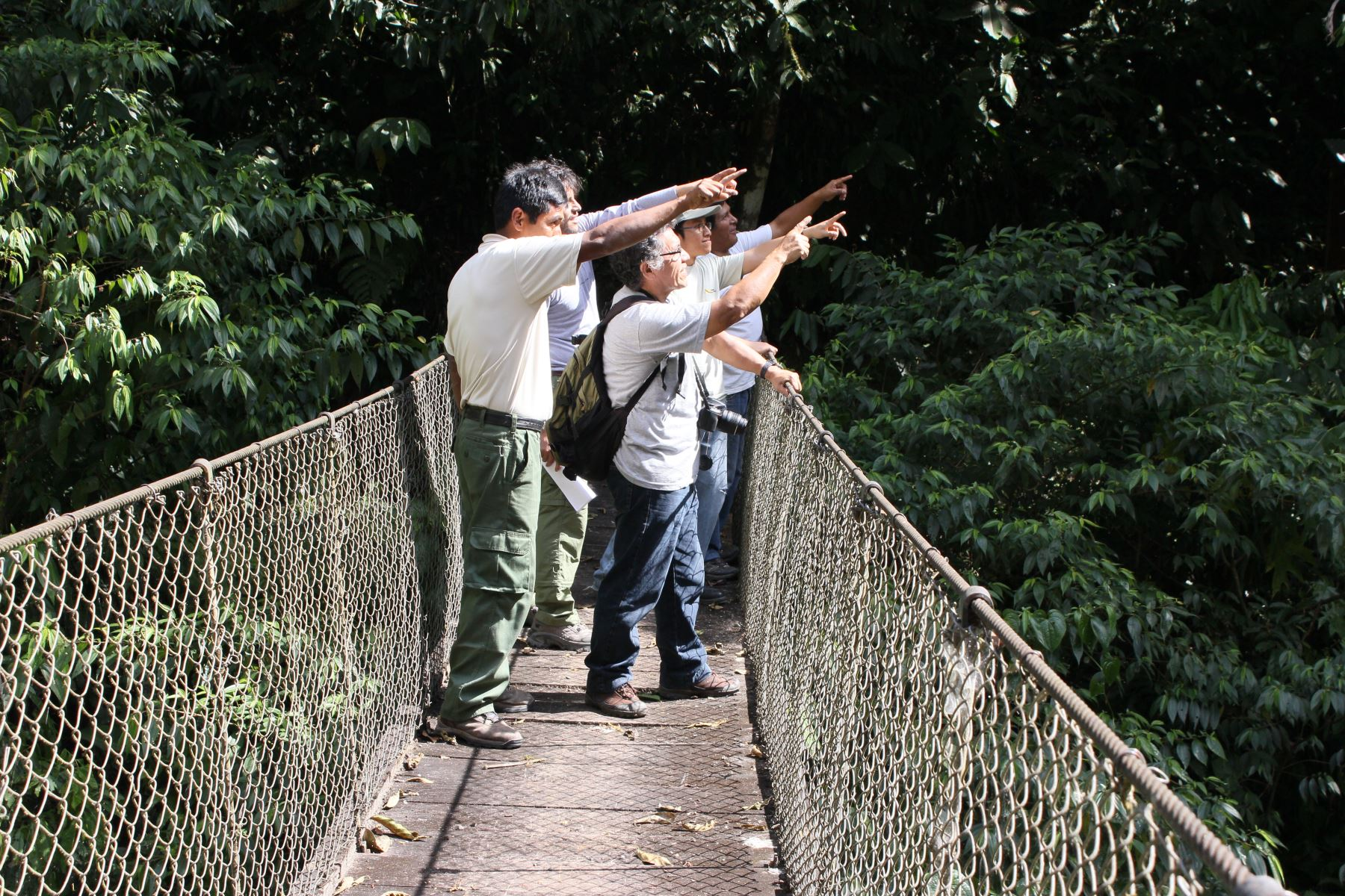 """Parque Yanachaga Chemillén recibió más de 4,000 visitas durante festival """"Selvámonos""""."""