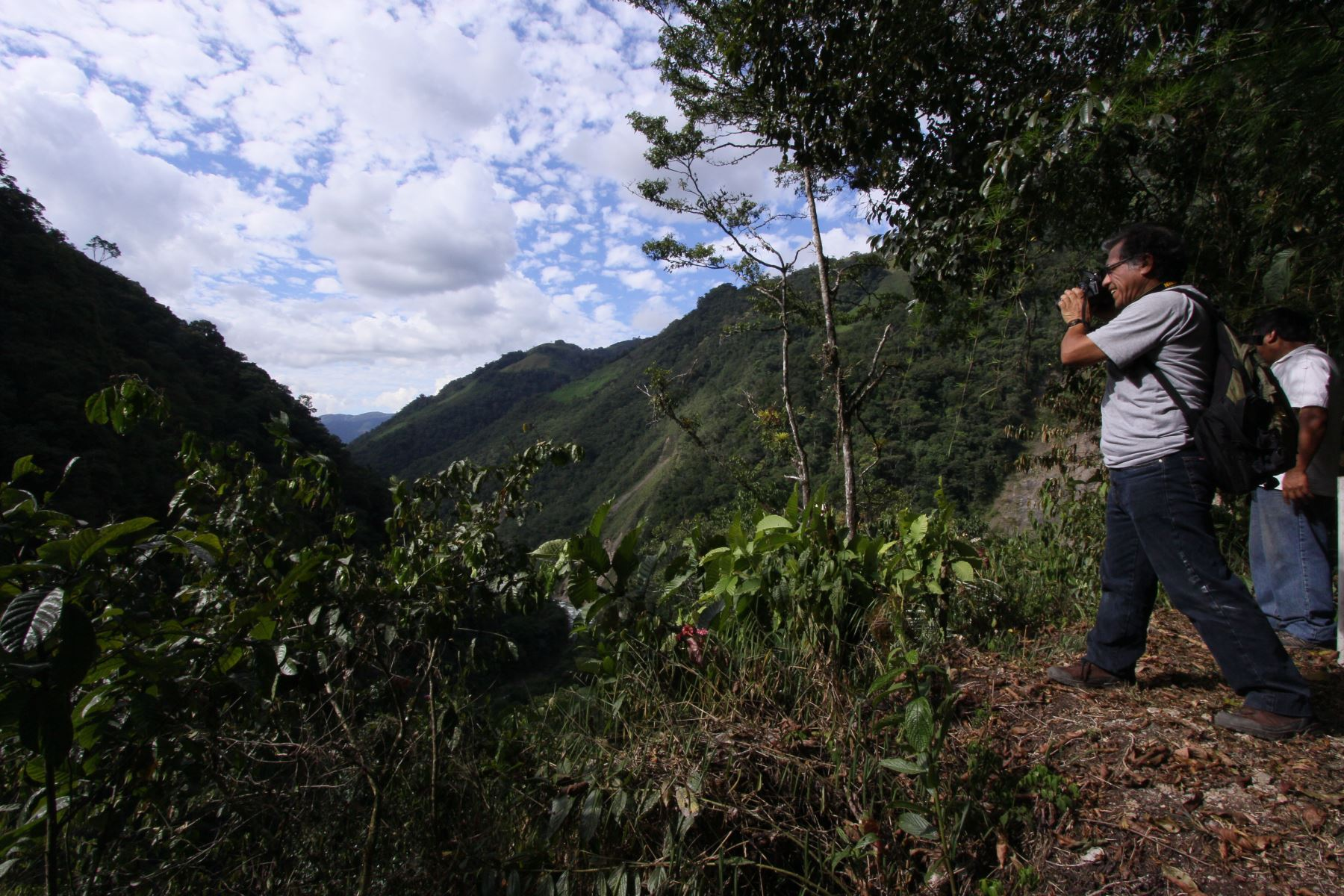 """Parque Yanachaga Chemillén recibió más de 4,000 visitas durante festival """"Selvámonos"""""""