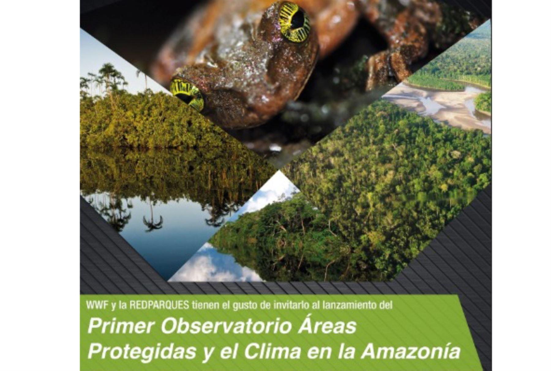 Observatorio de Áreas Protegidas y Cambio Climático de la Amazonia, herramienta que permitirá consolidar y organizar información para el manejo y la toma de decisiones relacionadas con las áreas protegidas del bioma amazónico